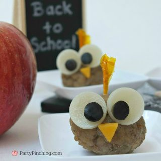 SMART OWL MEATBALL SNACK