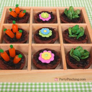 MINI BROWNIE GARDEN