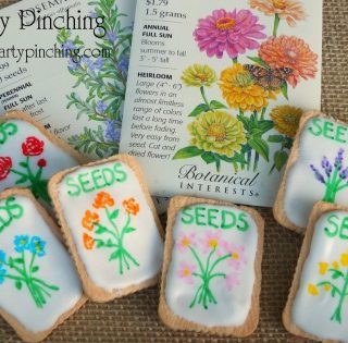 Garden Seed Packet Cookies