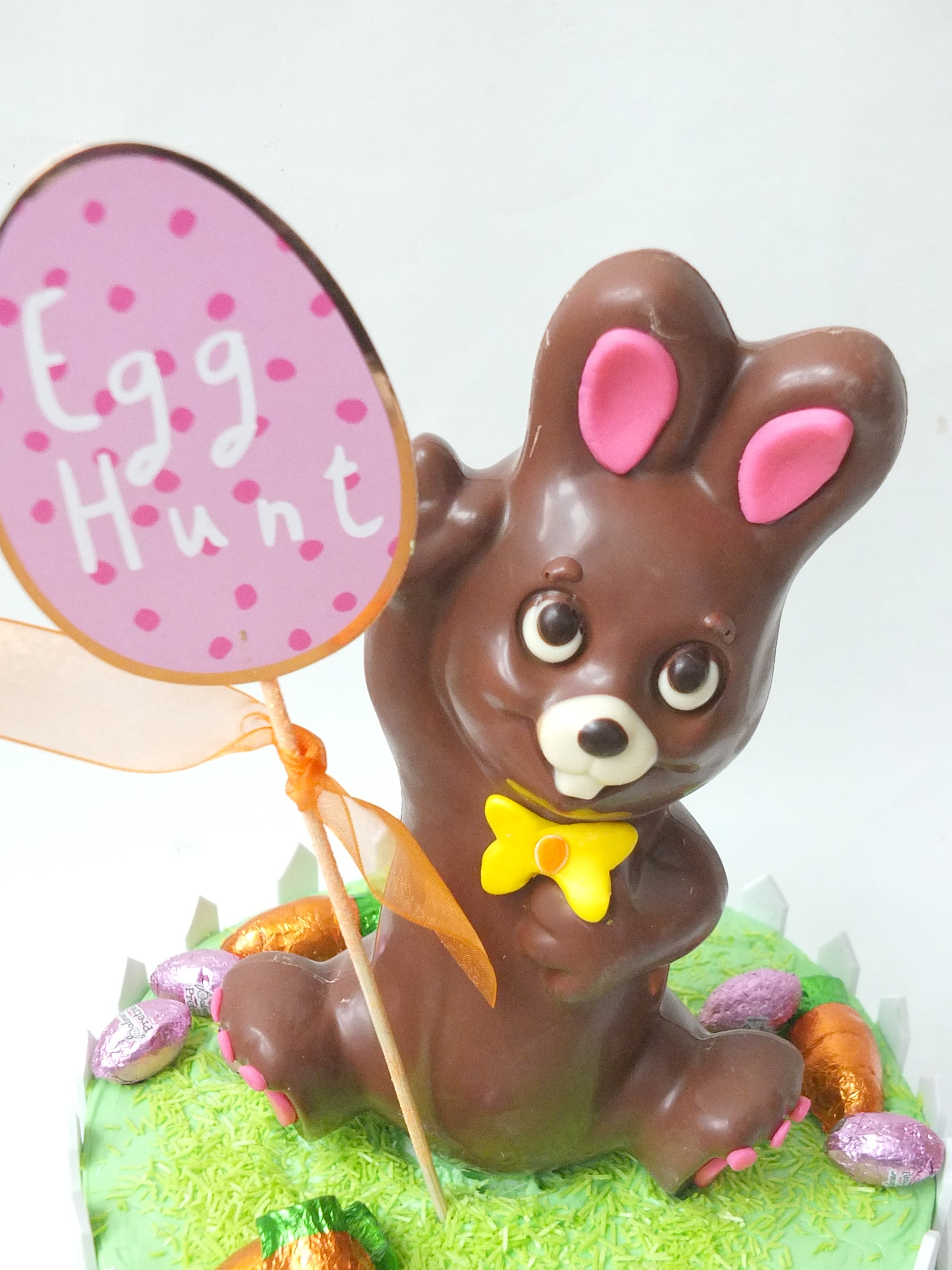 Adorable Chocolate Bunny Easter Egg Hunt Cake Centerpiece