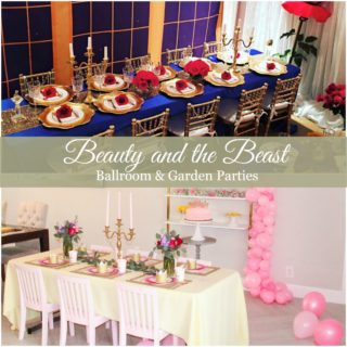 BEAUTY AND THE BEAST BIRTHDAY PARTIES