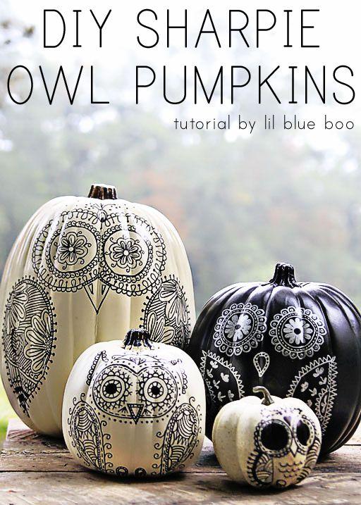 owl sharpie pen pumpkin, painted pumpkin, carved pumpkin ideas, Halloween pumpkins, cute pumpkins, pumpkin decorating ideas for kids, easy pumpkin decorating ideas, Halloween party ideas, pumpkin decorating ideas, no-carve pumpkins