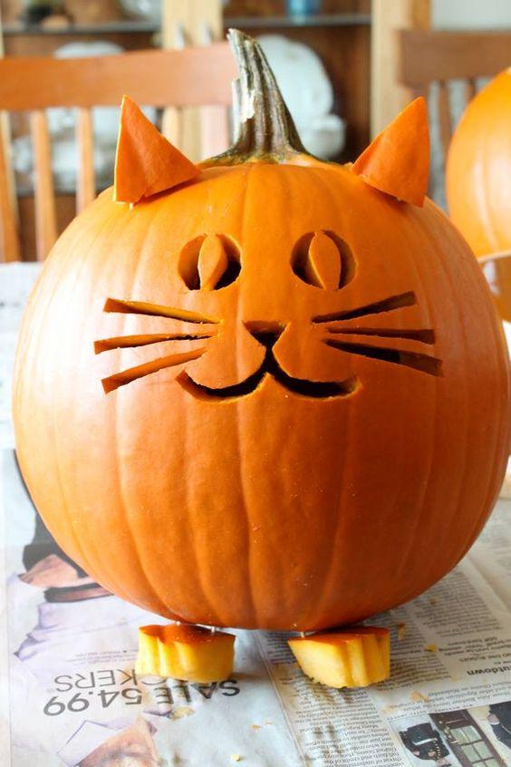 cat pumpkin, painted pumpkin, carved pumpkin ideas, Halloween pumpkins, cute pumpkins, pumpkin decorating ideas for kids, easy pumpkin decorating ideas, Halloween party ideas, pumpkin decorating ideas, no-carve pumpkins